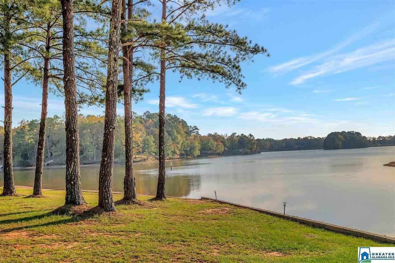 787 BLUE SPRINGS RD, Lincoln, AL 35096 - MLS#: 901094