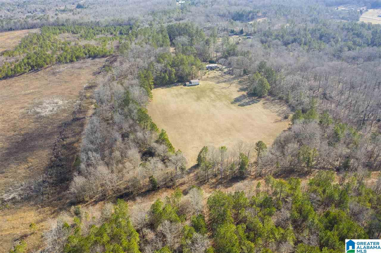 1678 RUSHING SPRINGS RD, Lincoln, AL 35096 - MLS#: 1275326