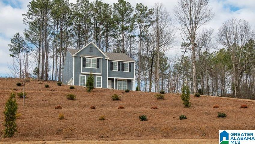 145 ROCK TERRACE CIR, Helena, AL 35080 - #: 893624