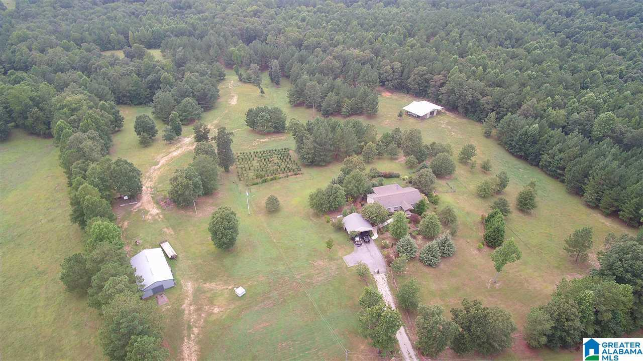 3309 CO RD 30, Roanoke, AL 36274 - MLS#: 893131