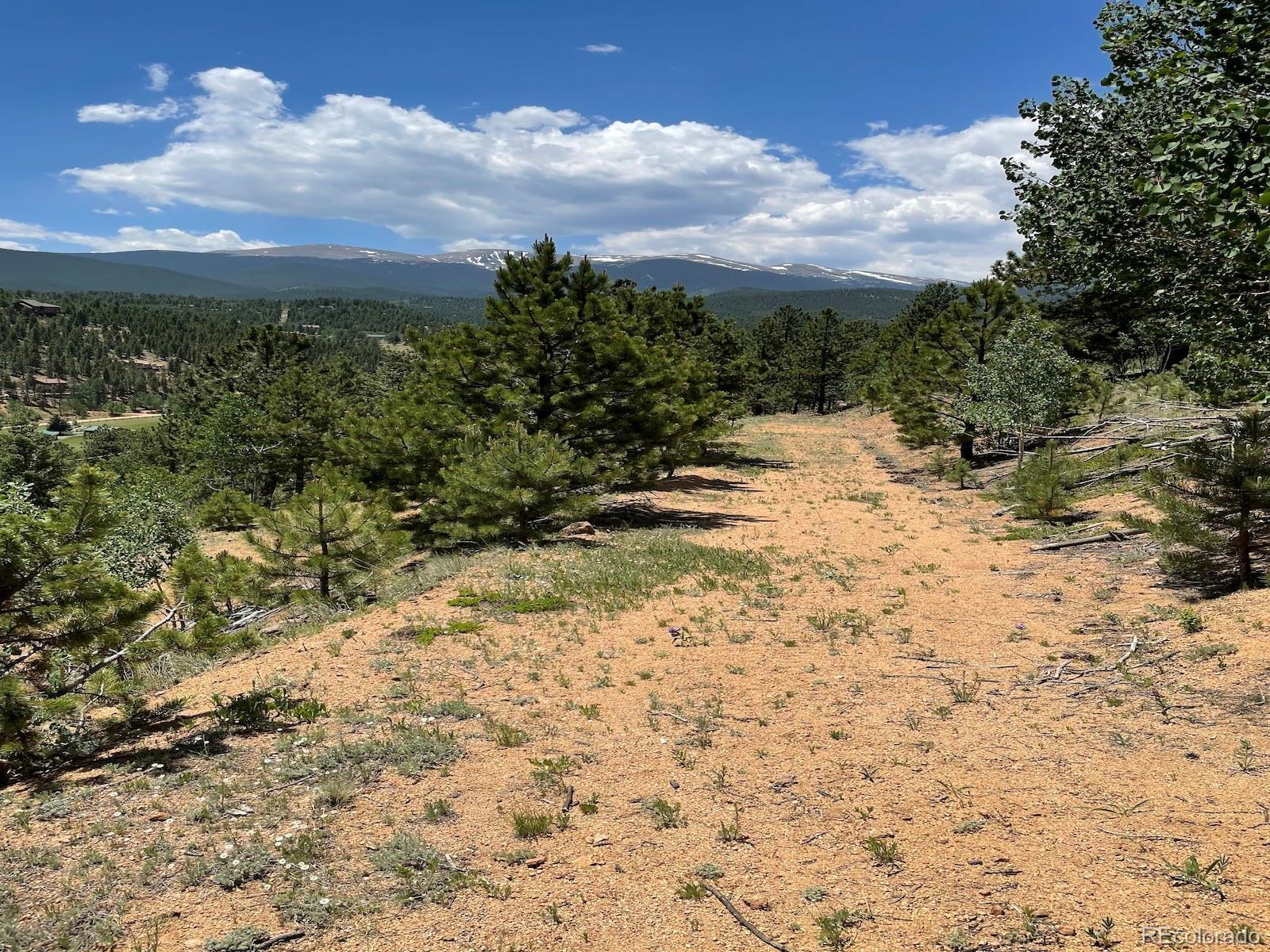 132 Lallie Road, Bailey, CO 80421 - #: 9606126