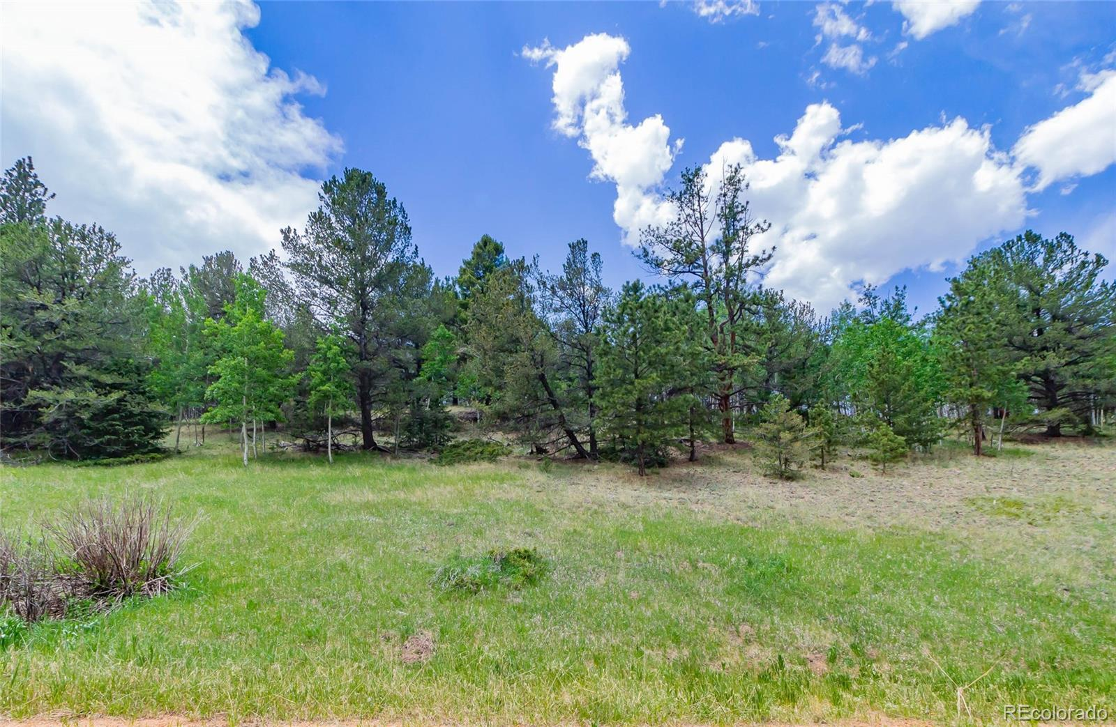 185 Willow Road, Divide, CO 80814 - #: 4602120