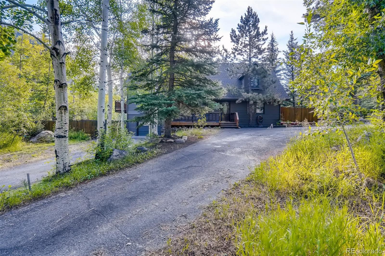 137 Silver Load Circle, Dumont, CO 80436 - #: 8609141
