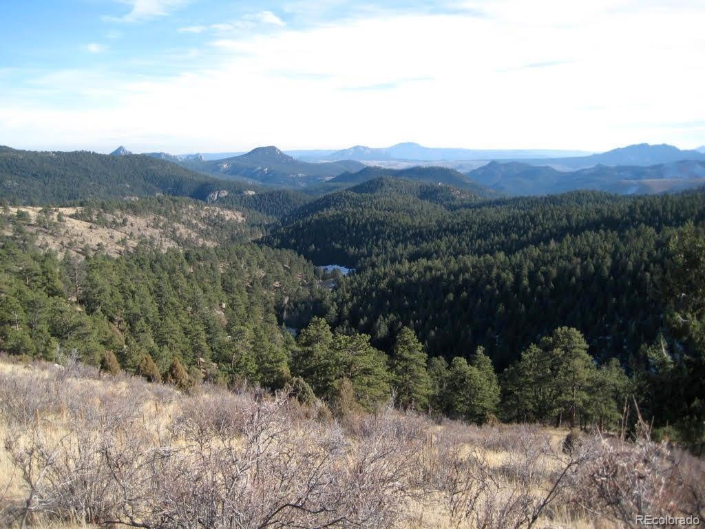 1 Jubilee Trail, Pine, CO 80470 - #: 4437193