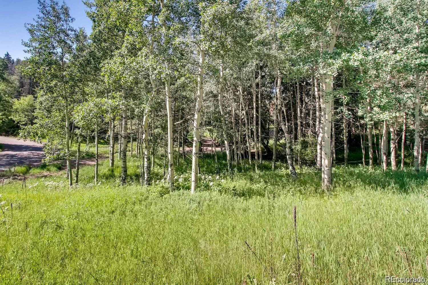 6753 Snowshoe Trail, Evergreen, CO 80439 - #: 9924247