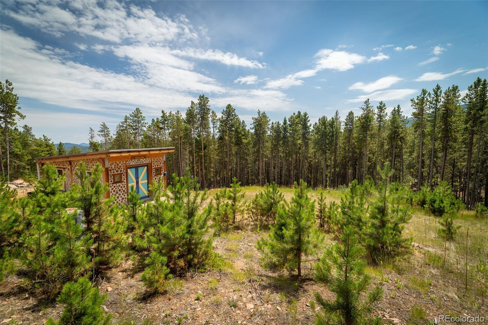 101 Sioux Trail, Evergreen, CO 80439 - #: 6844263
