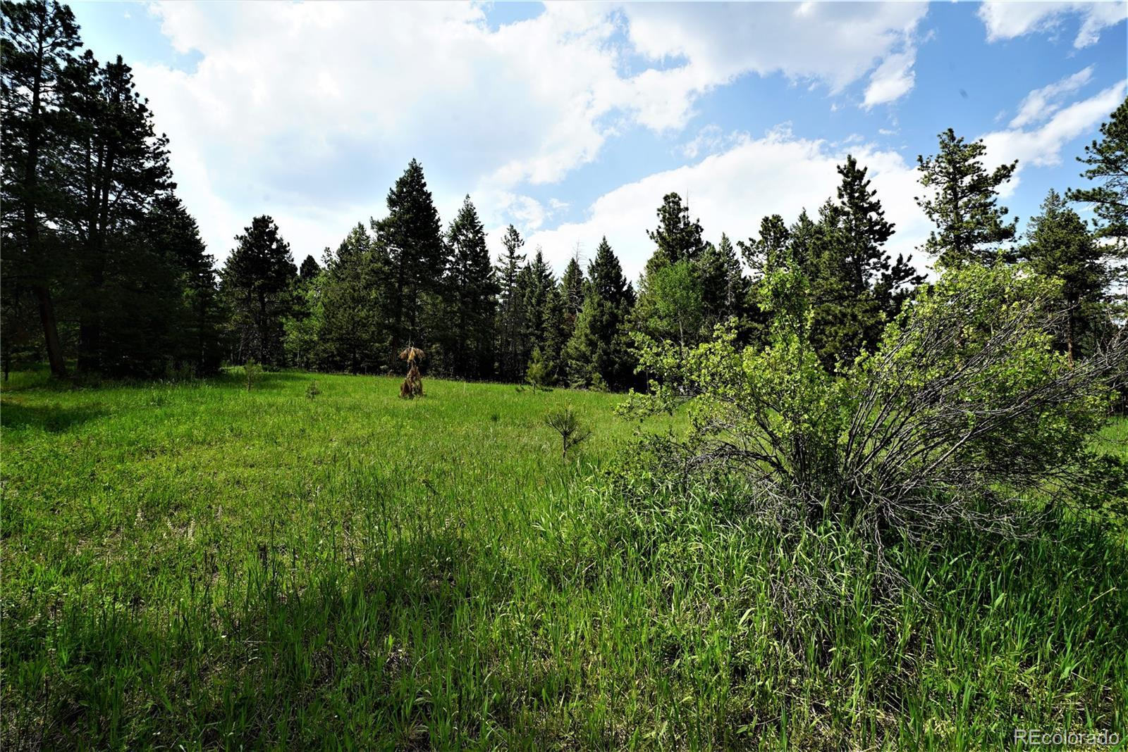 00 Indian Springs Road, Conifer, CO 80433 - #: 6328272