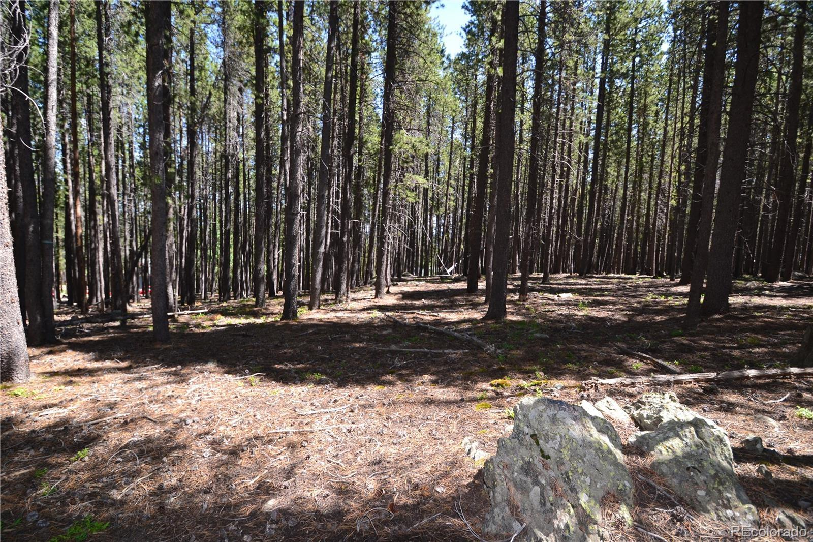 0 Fawn Trail, Evergreen, CO 80439 - #: 8757311