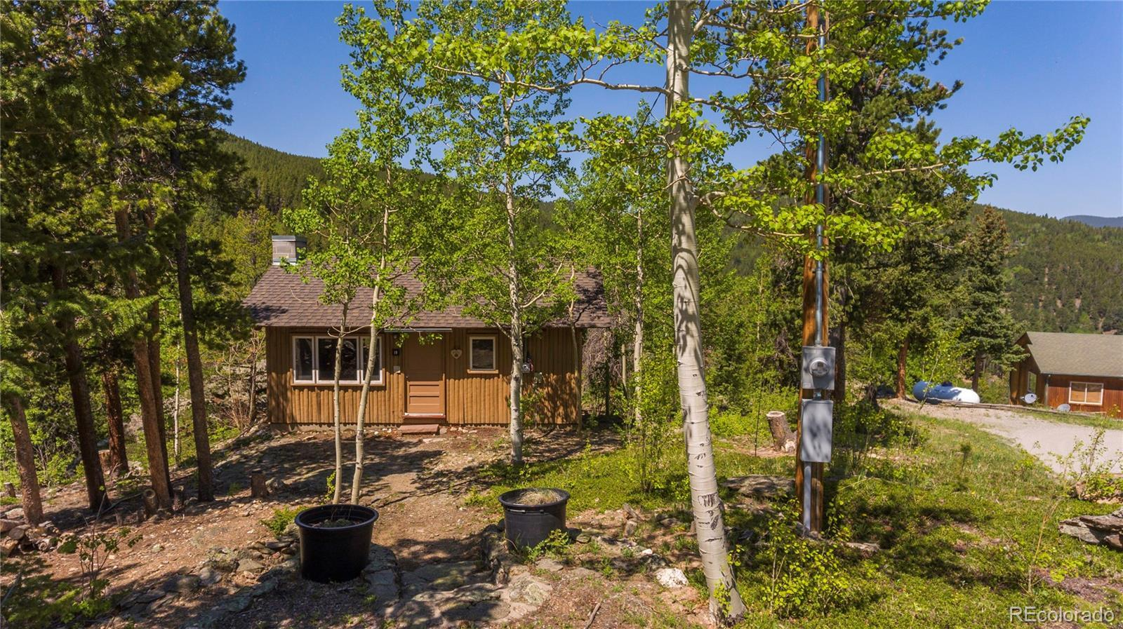19 Valley View Lane, Evergreen, CO 80439 - #: 2241328