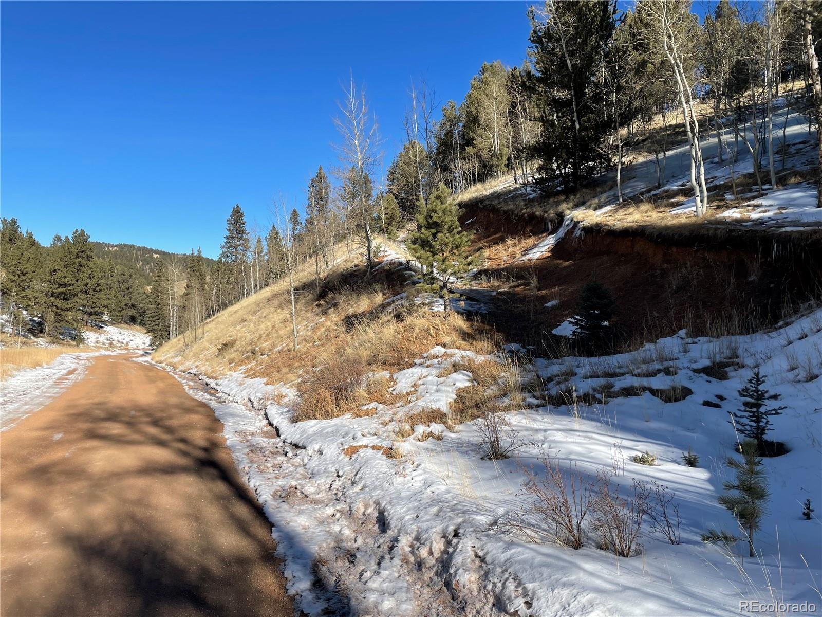 518 Willow Road, Divide, CO 80814 - #: 9990386
