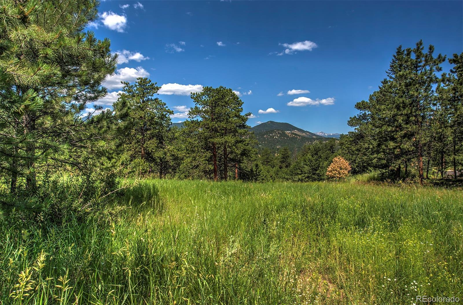 32117 Fox Run Lane, Evergreen, CO 80439 - #: 4320452