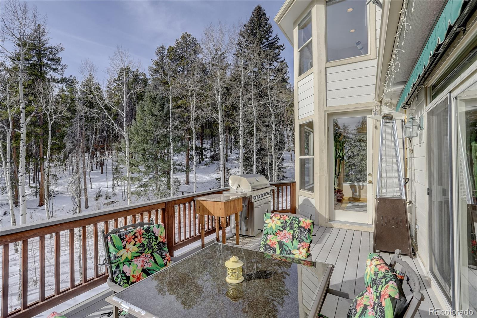 21645 Indian Springs Road, Conifer, CO 80433 - #: 9632498