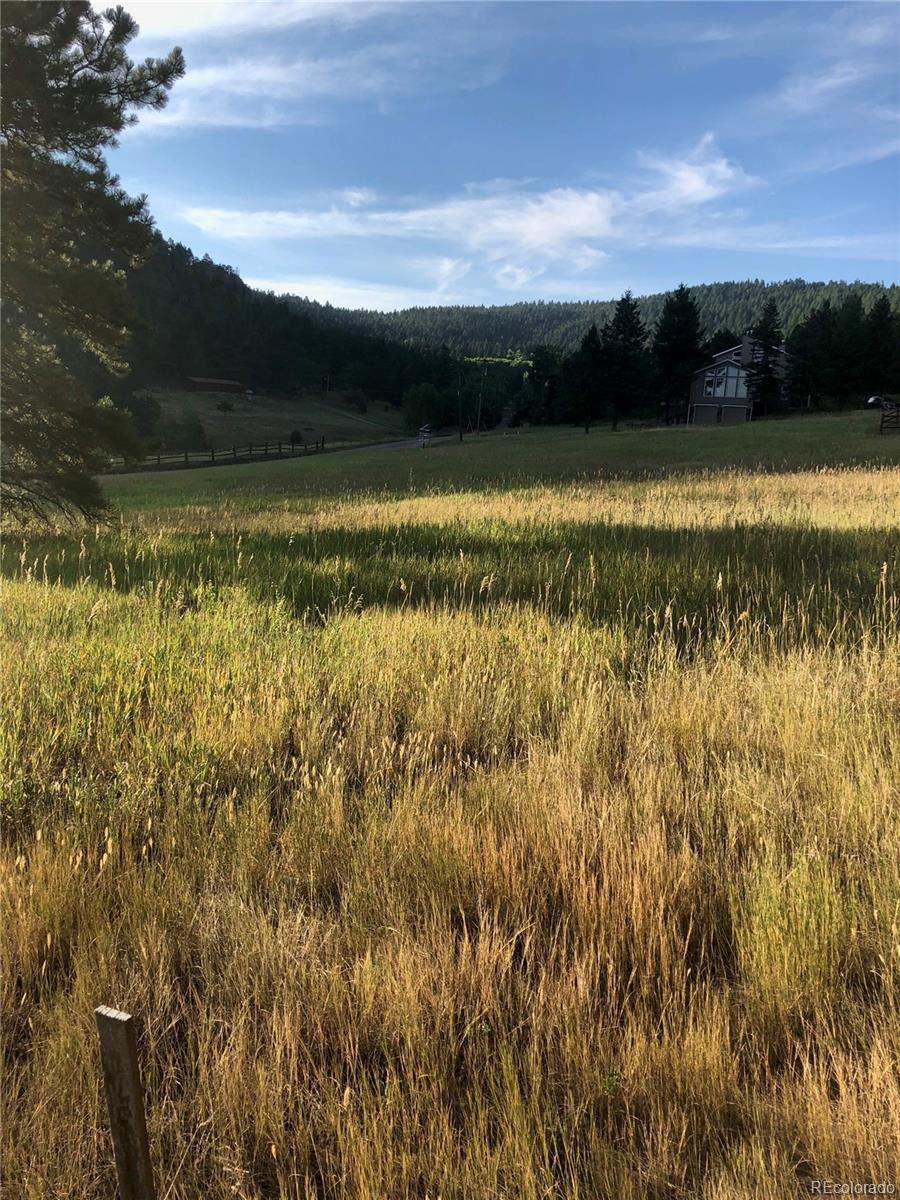 Skyline Drive, Evergreen, CO 80439 - #: 6360521