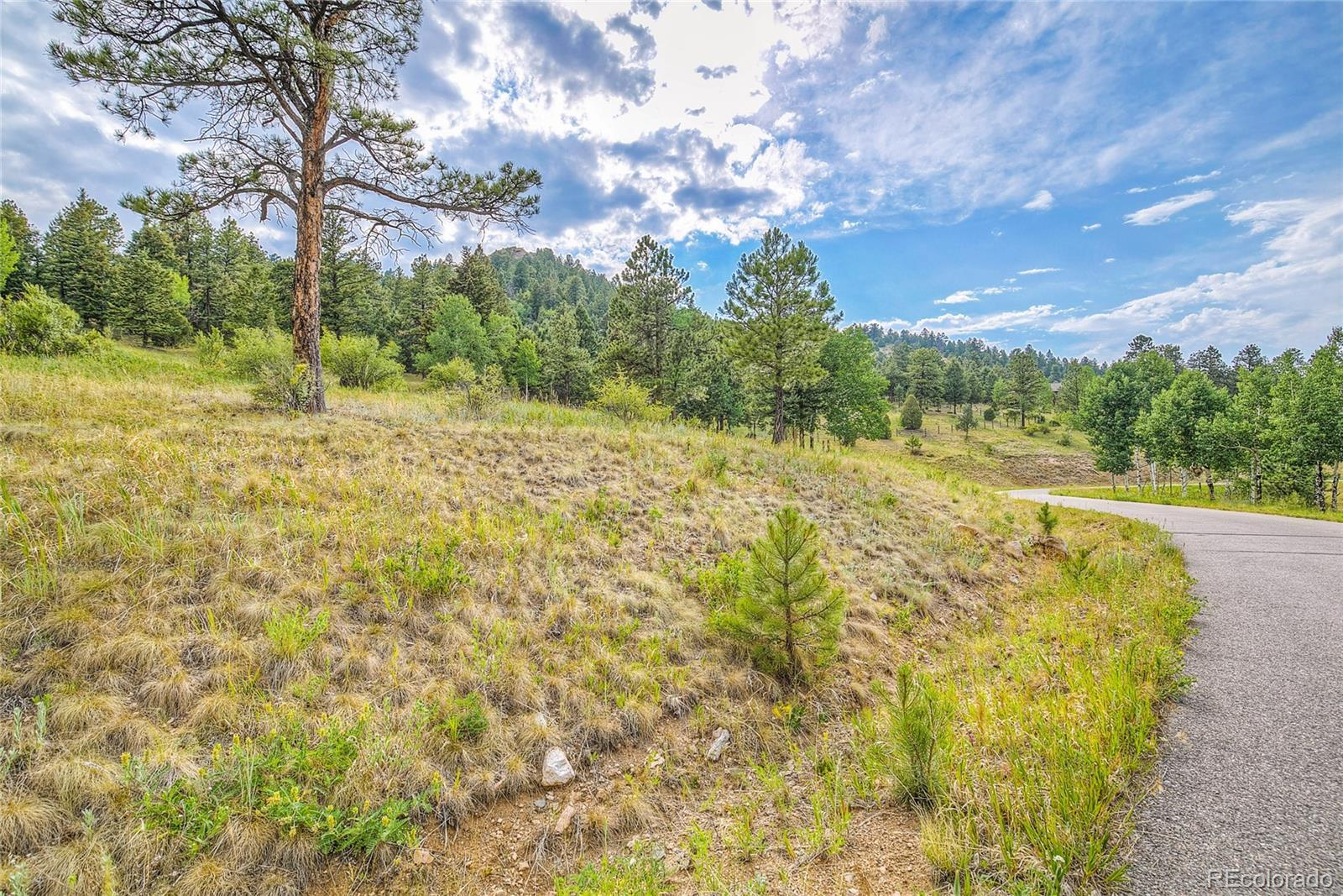 14515 Reserve Road, Pine, CO 80470 - #: 3136640