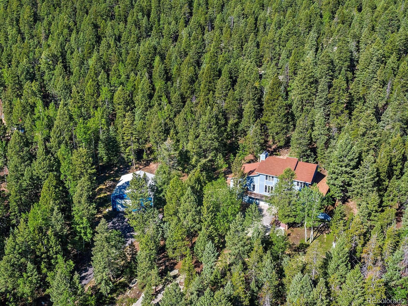 9531 S Warhawk Road, Conifer, CO 80433 - #: 3953700