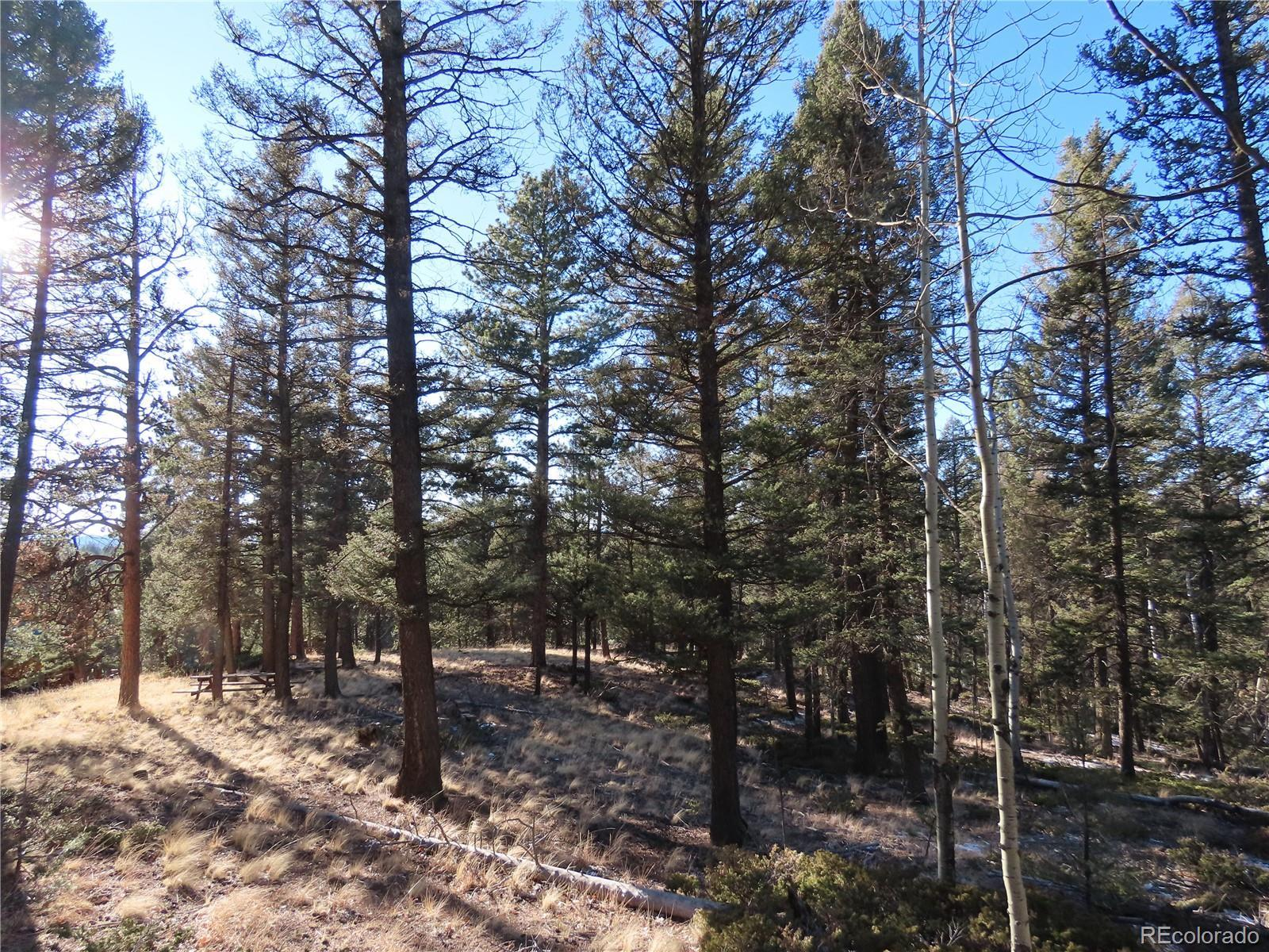 39 N Eldorado Circle, Florissant, CO 80816 - #: 7240788