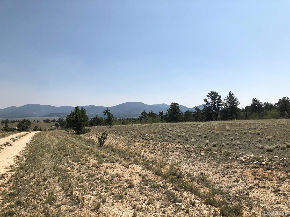 566 Shenandoah Path, Hartsel, CO 80449 - #: 6292812