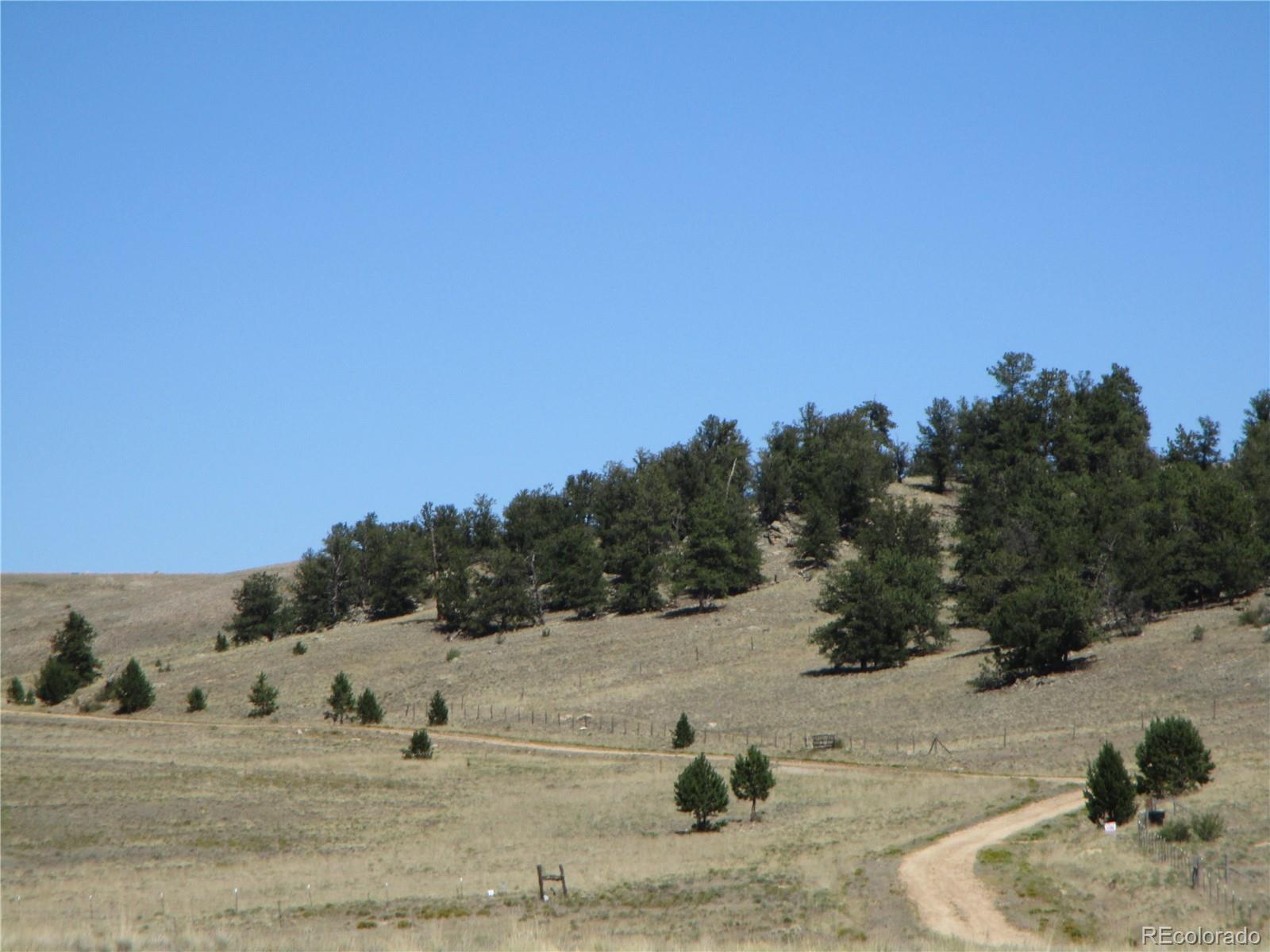 6124 Elkhorn Road, Hartsel, CO 80449 - #: 6028930