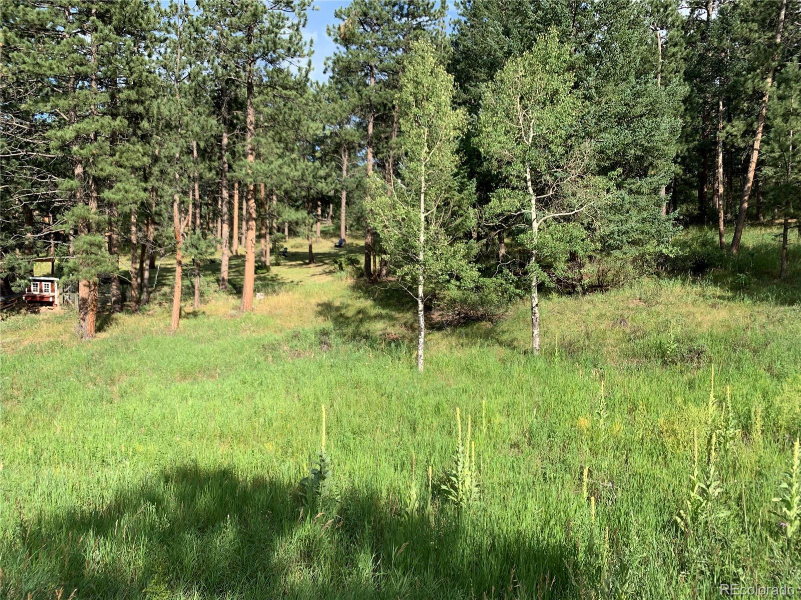 5680 Cliff Road, Evergreen, CO 80439 - #: 4762958