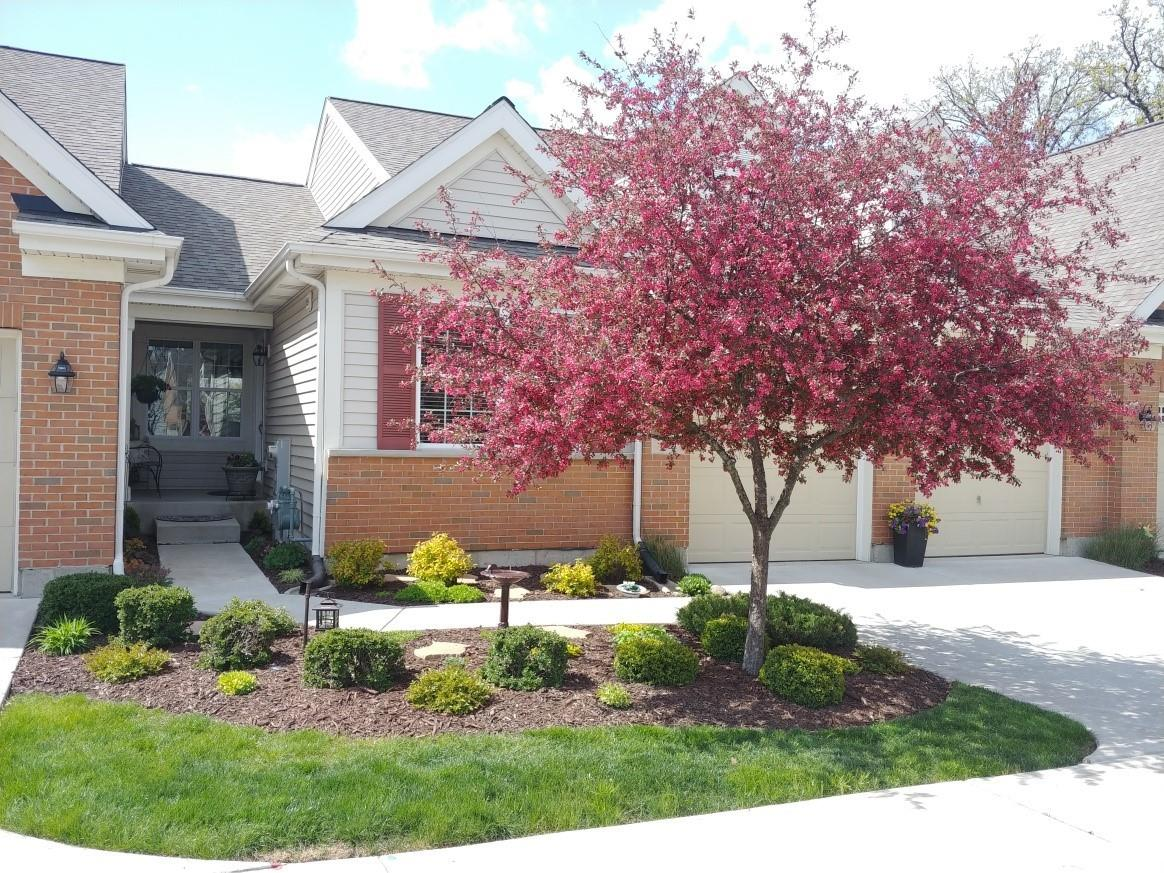 24 Tall Grass Court, Streamwood, IL 60107 - #: 11042229