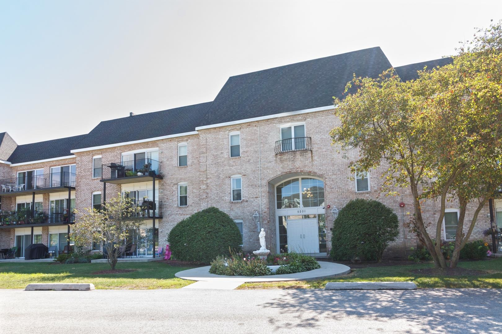 5201 Carriageway Drive #304, Rolling Meadows, IL 60008 - #: 11020253