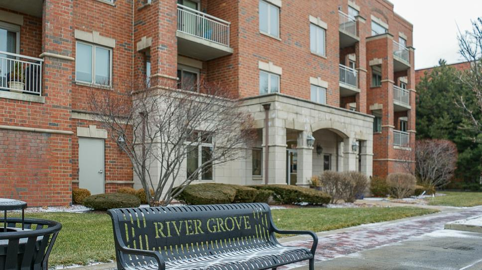8550 Grand Avenue #202, River Grove, IL 60171 - #: 10981312