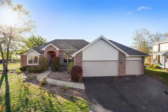21565 Trick Circle Court, Wilmington, IL 60481 - #: 10908448