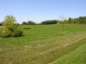 11601 Emily Court, Spring Grove, IL 60081 - #: 11073491