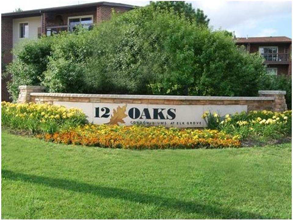 900 Perrie Drive #102, Elk Grove Village, IL 60007 - #: 10913507
