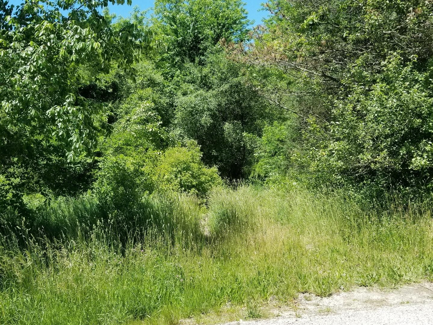 LOT 20 ORCHARD VALLEY Drive, McHenry, IL 60050 - #: 10746618
