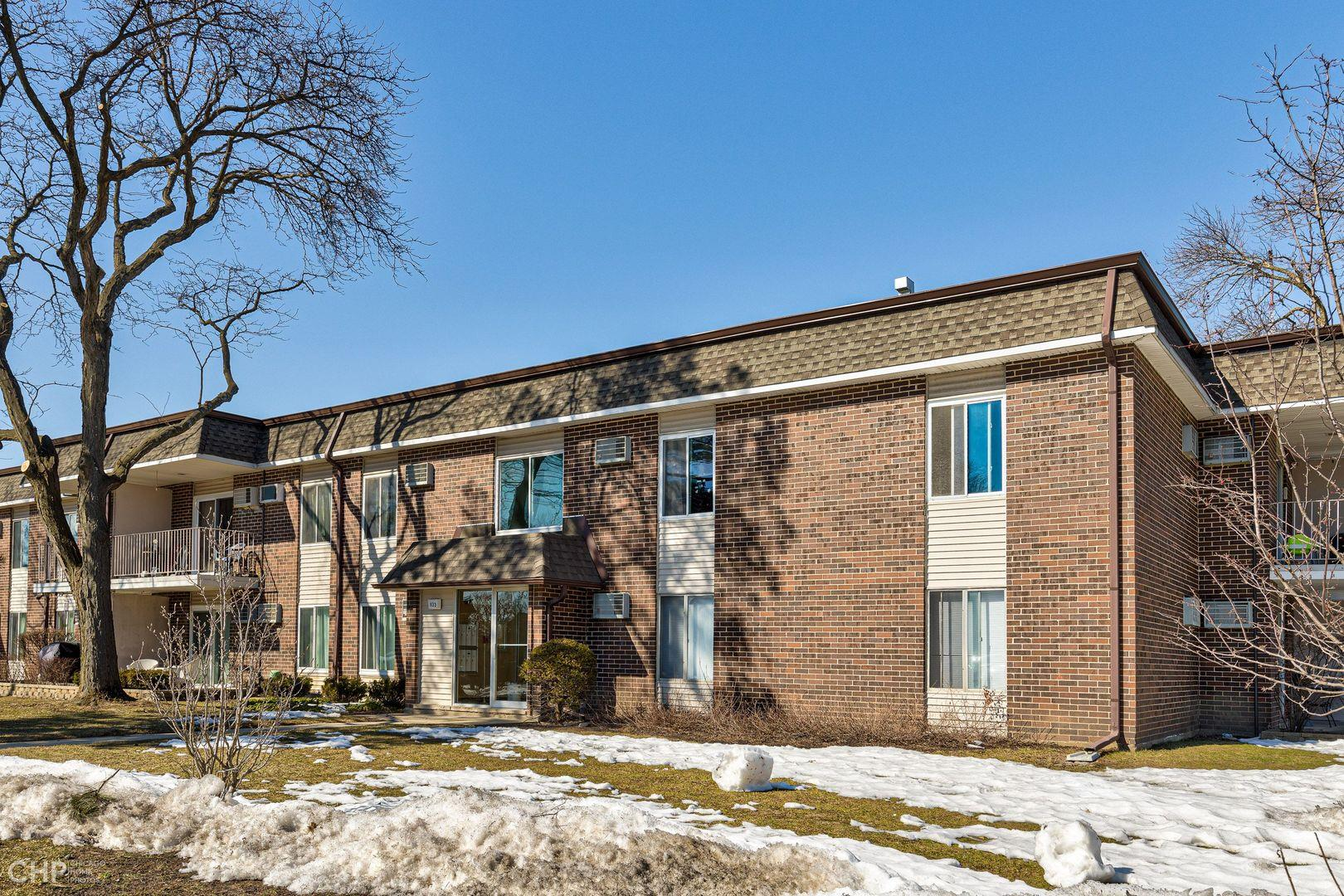 1133 Miller Lane #207, Buffalo Grove, IL 60089 - #: 11070989